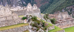 Day Tour to Machu Picchu